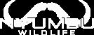Nyumbu Wildlife